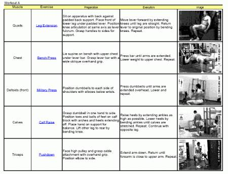 Weight Training Guide For Beginnersworkout Routine Absphysical Fitness Programs Youthlow Carb Foods
